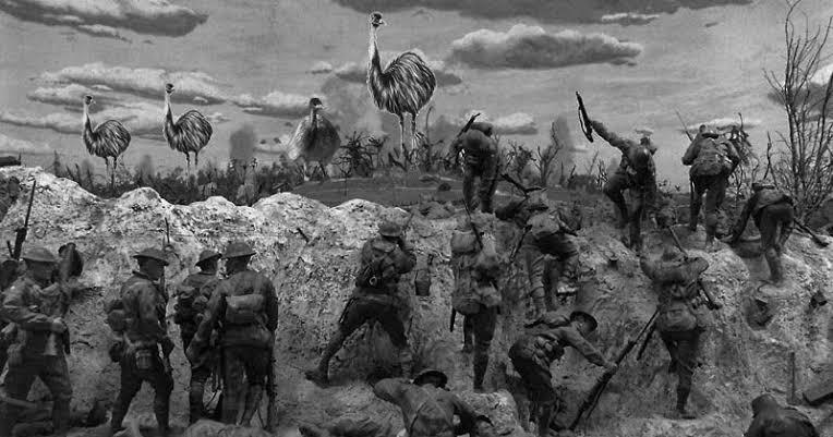 สงครามนกอีมู